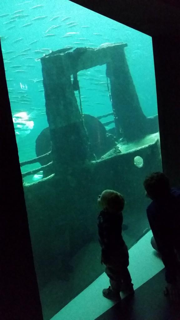 Oceanariet